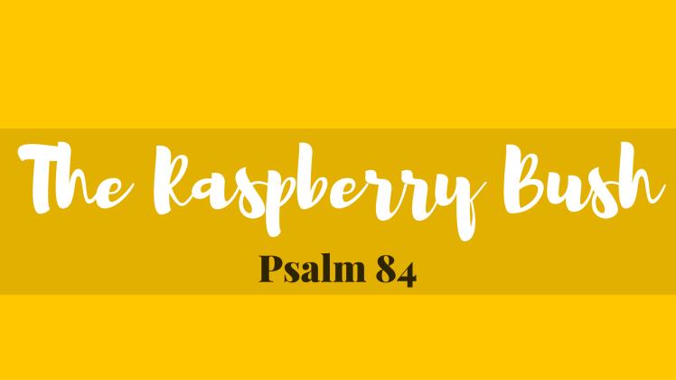 Psalm 84 Sermon - Wyn